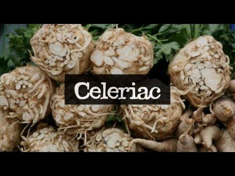 Celeriac, Organic