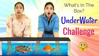 Video WHAT's In The BOX - UNDERWATER Challenge ft. ShyStyles | #Roleplay #Fun #Sketch #ShrutiArjunAnand MP3, 3GP, MP4, WEBM, AVI, FLV Desember 2018