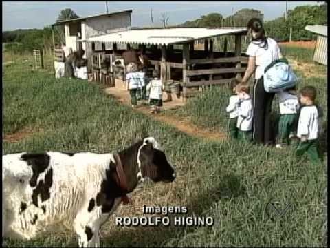 Reportagem - Crianças Visitam Fazenda em Lavras