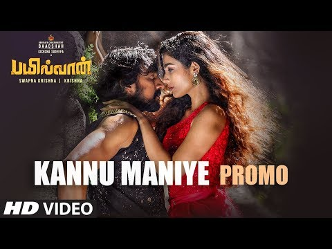 Pailwan - Promo Latest Official