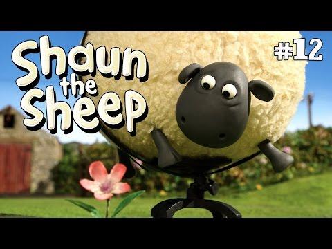 Shaun the sheep shirley whirley