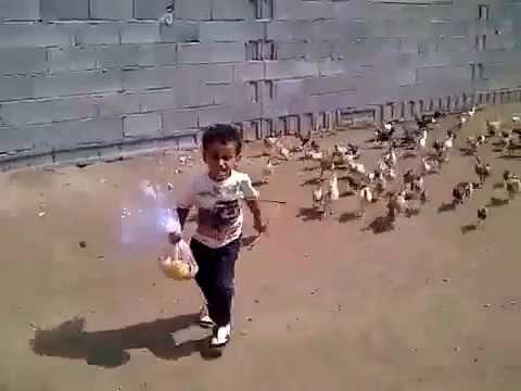video que muestra a un niño huyendo de unas gallinas