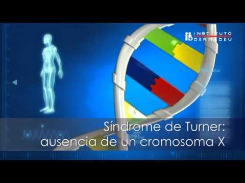 Cariotipo Genético  - Instituto Bernabeu