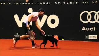 Gastao Elias and Roberto Carballes Baena have specially trained shelter dogs as ball boys for a fun match in Sao Paulo.