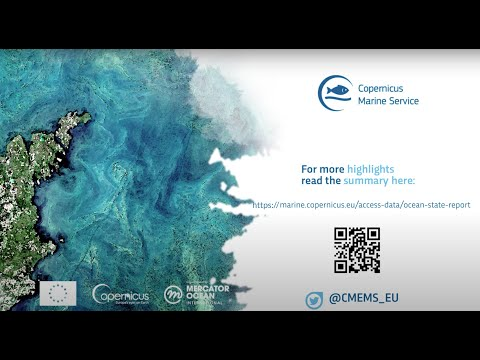 Ocean State Report 5 Summary Now Available