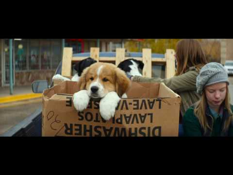Dog S Purpose Film Release Date Uk