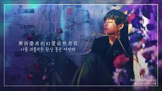 [韓中字] BTS防彈少年團 V泰亨 - 'Intro:Singularity'
