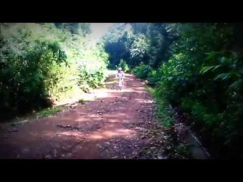 Pedal Cascata Queda Livre em Ivorá