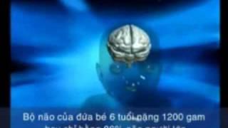 Bàn tính và số học trí tuệ cho trẻ từ 4 đến 12 tuổi