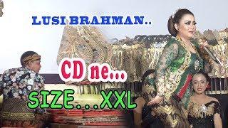 Video DALANGE KOCLOK...SINDEN 'E GENDENG......Lusi Brahman - Ki minto Darsono.. MP3, 3GP, MP4, WEBM, AVI, FLV Februari 2019