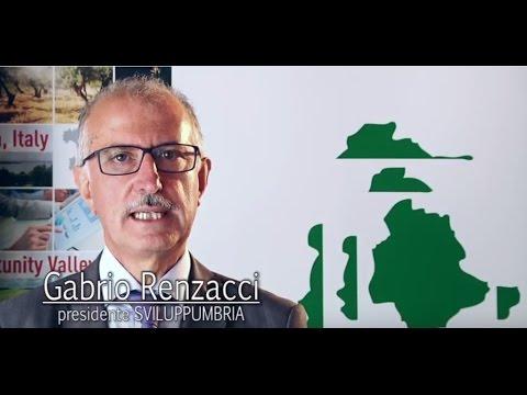 "Renzacci: ""Umbria is a land for entrepreneurship"""
