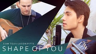 Video Shape of You (Ed Sheeran) - Sam Tsui LOOPING COVER ft. Jason Pitts download in MP3, 3GP, MP4, WEBM, AVI, FLV Mei 2017
