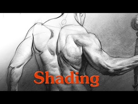 Shady Sundays: Shading Forms and Figures with Proko