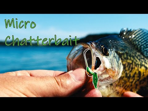 Video This MICRO Lure Catches Crappie | TINY Lure Crappie Fishing Challenge download in MP3, 3GP, MP4, WEBM, AVI, FLV January 2017