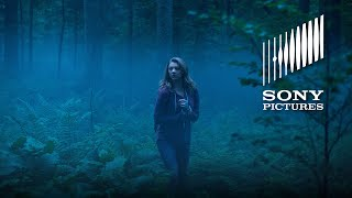 Nonton The Forest - 360 Experience Film Subtitle Indonesia Streaming Movie Download
