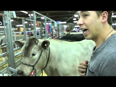 Big Al, J-Si + Jenna hang with cows