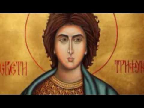 СРБИ ДАНАС СЛАВЕ СВЕТОГ ТРИФУНА И ЈОШ ПОНЕШТО…