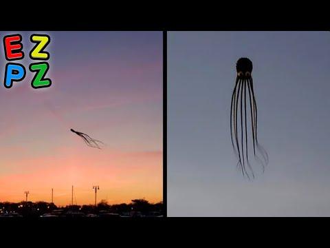 r/Oddlyterrifying · i'm so scared