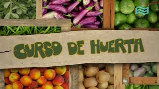 Huerta 1 - La huerta orgánica.
