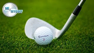 Video STOP YOUR CHIPPING YIPS MP3, 3GP, MP4, WEBM, AVI, FLV Oktober 2018