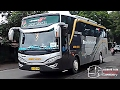 Download Video Download Video TELOLET OM... | PERANG KLAKSON PO. HARYANTO | NGABUL GAPURO KE SELATAN - LaguU.co