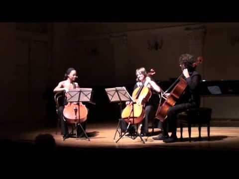 J. Haydn: Divertimento in D major (Cello Trio)