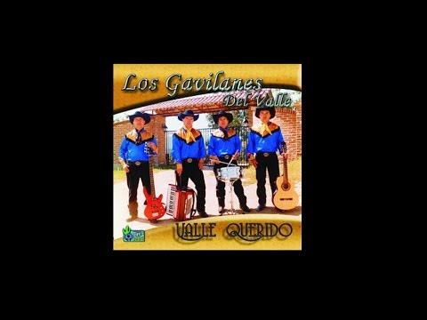 LOS GAVILANES DEL VALLE- CUMBIA CALIENTE - Thời lượng: 3 phút và 49 giây.