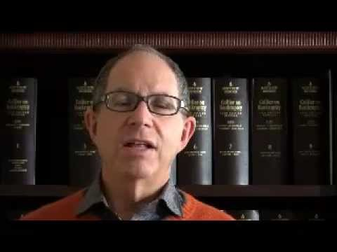 Bankruptcy Attorney Chicago | David Leibowitz | (847) 249-9100 | Lake Law History