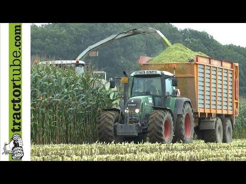 Mais häckseln 2014 beim LU van Hal - best of maize, Claas in action - music version