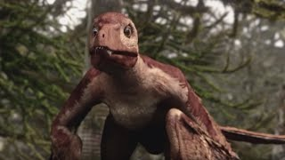 Video Microraptor | Flying Dinosaur | Planet Dinosaur | BBC MP3, 3GP, MP4, WEBM, AVI, FLV Juli 2018