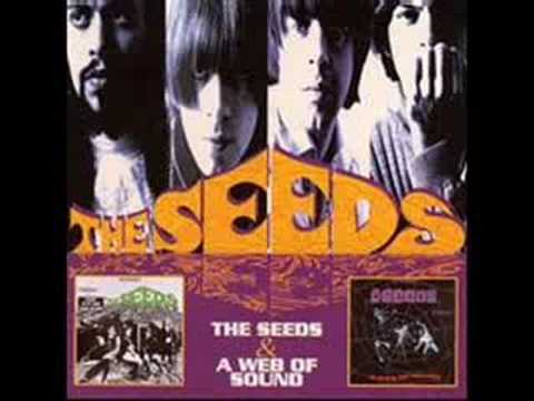 Tekst piosenki The Seeds - Can't Seem To Make You Mine po polsku