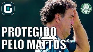 Coletiva de imprensa do Palmeiras não teve jogador ou Cuca, teve Alexandre Mattos defendendo o Cuca no VerdãoProtestos da torcida também acontecem pedindo um melhor desempenho da equipeAcompanhe também as nossas redes sociais:Facebook - https://www.facebook.com/gazetaesportivaTwitter - https://twitter.com/gazetaesportivaInstagram - https://www.instagram.com/gazetaesportiva
