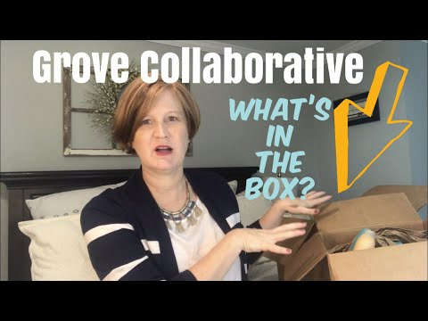 Grove Collaborative / Thinking About Cold and Flu season / What did I order this month?