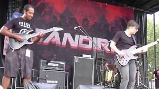 @ Vans Warped Tour, Vinoy Park, St. Pete FL