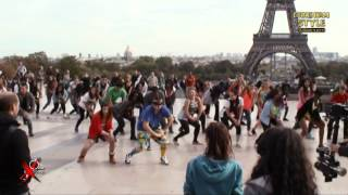 GANGNAM STYLE flashmob in Paris, France, at Trocadero on October 7th 2012 (파리 강남스타일)