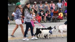 Aptos (CA) United States  city photo : 2016 World's Shortest Parade ~ Aptos, California
