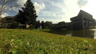Fishing at UNF Campus Time-lapse
