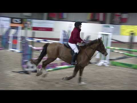 1 Metre 5 clear round Greenlands 28th March 2018