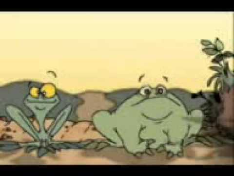 Two frog -funny cartoon