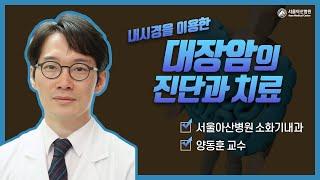 내시경을 이용한 대장암의 진단과 치료 미리보기