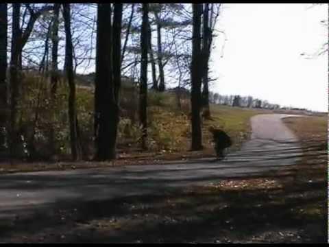 Oak Hill Park Longboard Skate