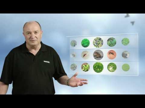 Kiwicare Garden Problem Solver TVC