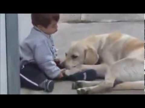 coccole amorevoli tra un cane e il suo padroncino down!