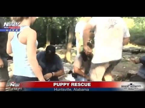 FNN: Deaf Puppy Rescue in Alabama; Vigils for Annapolis newspaper victims