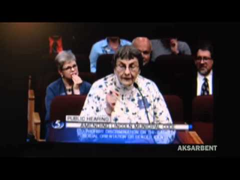 Lincoln, Nebraska LGBT hearing: the lady BEHIND hat lady has HER say too: she's wonderful Video