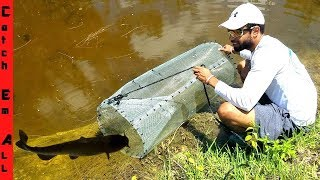 Video BEST FISH TRAP using only HOME DEPOT supplies diy CATCHES FISH! MP3, 3GP, MP4, WEBM, AVI, FLV Agustus 2019