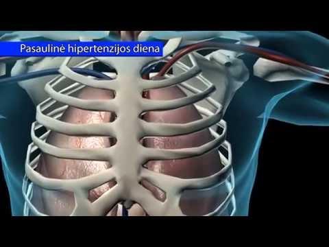 Pasaulinė Hipertenzijos diena 2016