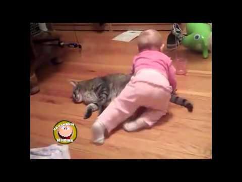 Pisica plictisita si copilul stresant - Ca romanu' ©
