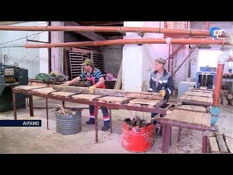 Сотрудники лесной отрасли готовятся отмечать свой профессиональный праздник