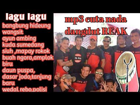 CUTA NADA mp3 dangdut reak lagu lagu sunda